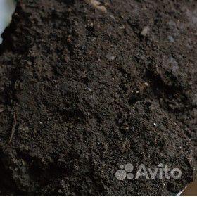 Чернозем плодородный, перегной, грунт, чёрный песо купить на Зозу.ру - фотография № 1