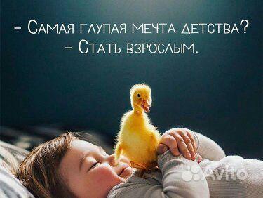 Ветеринар с выездом купить на Вуёк.ру - фотография № 2