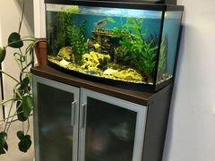 Аквариум для рыбок 120л