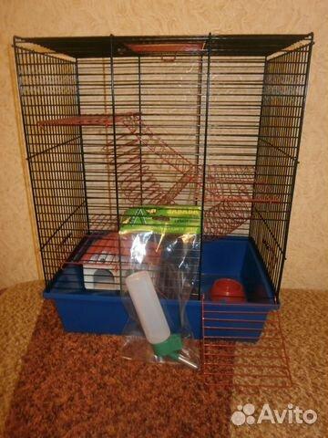 странице представлен клетка доя крысы на авито в спб неинтересный