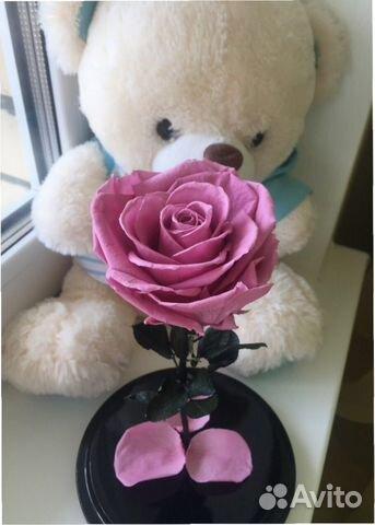 c7da8c309421 Розы в колбе средние. Отличный подарок на 8 марта   Festima.Ru ...