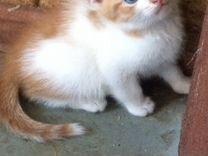 Малыш с голубыми глазками
