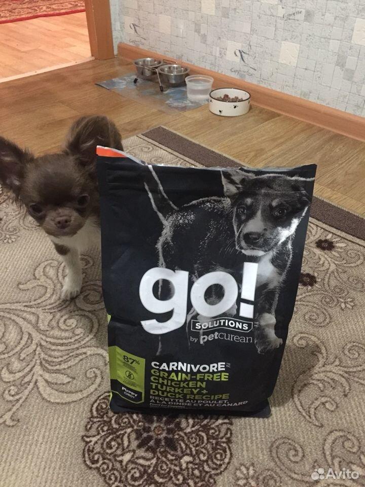 Корм для собак Go  89520614311 купить 1